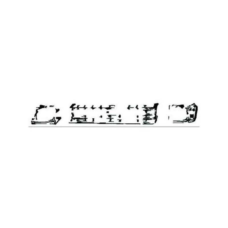 Grille gauche (CONDUCTEUR) TOYOTA TERCEL 1981 à 1982
